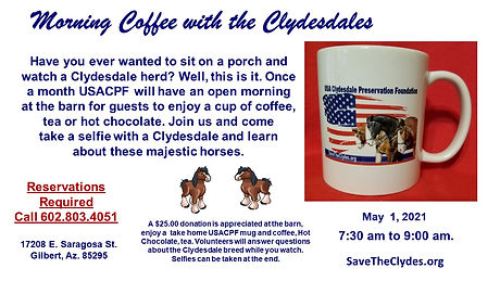 morning coffee with the Clydesdales [Aut