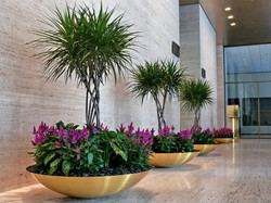 Interior Plantscapes