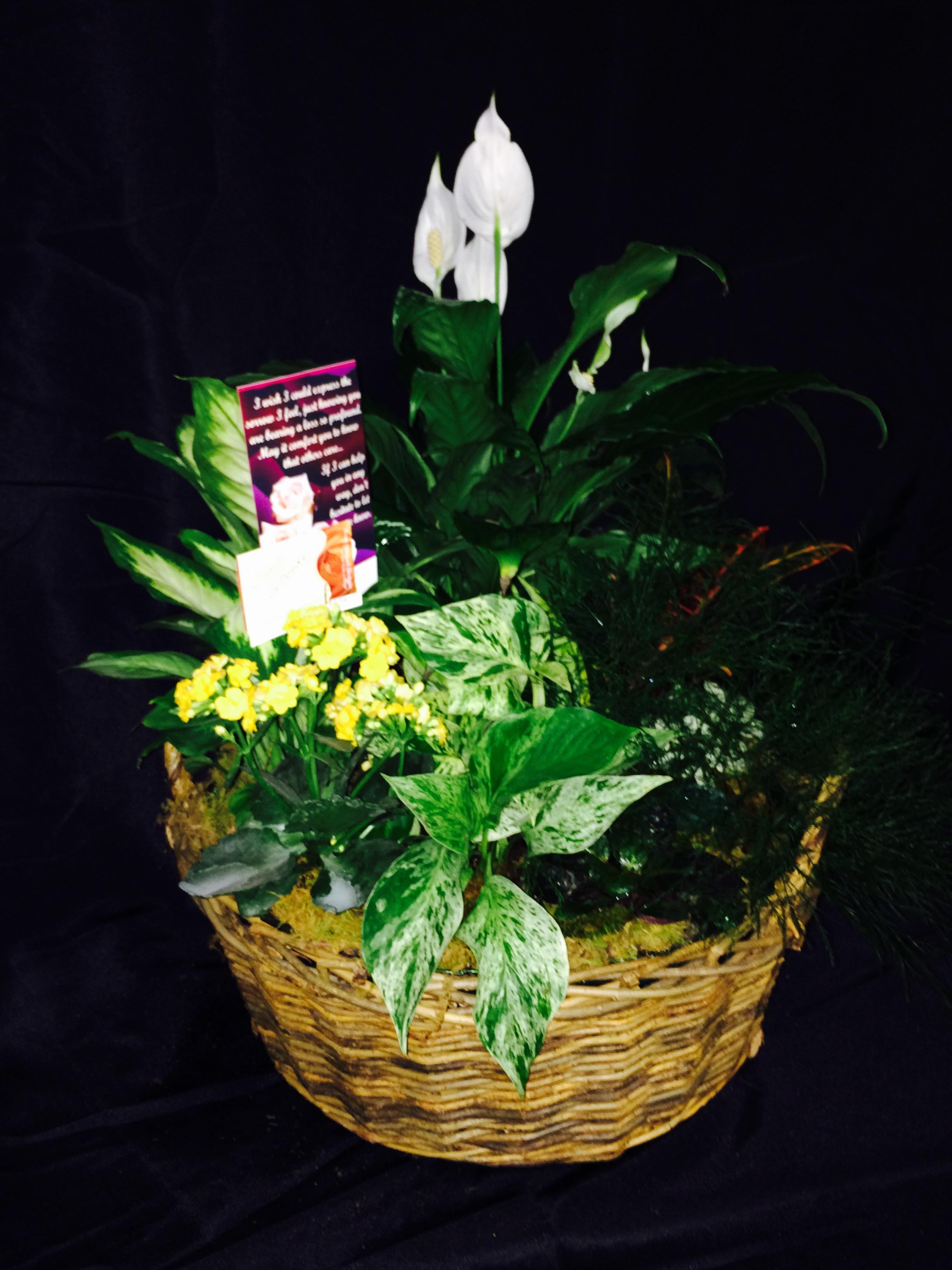 Garden Baskets