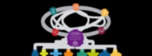 Custumer Experience - Estudios de Satisfacción al cliente