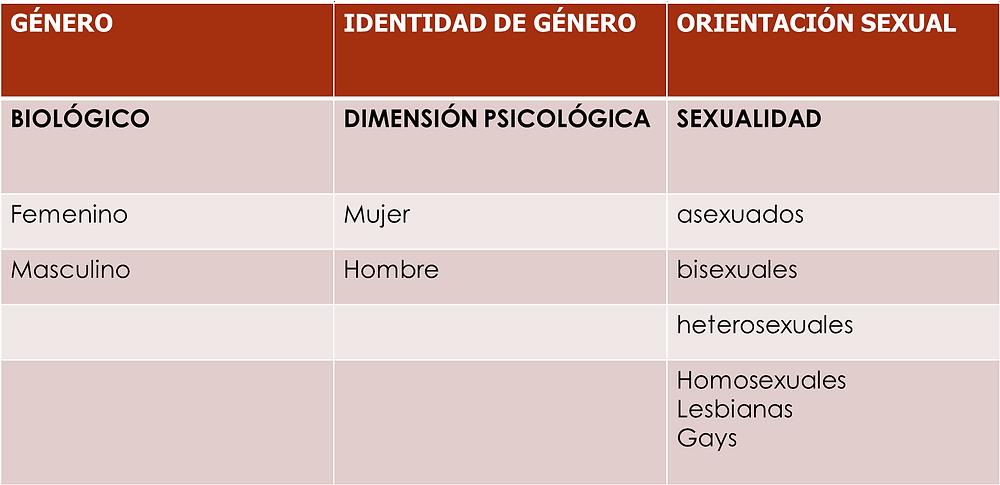 Investigación por categoría de género