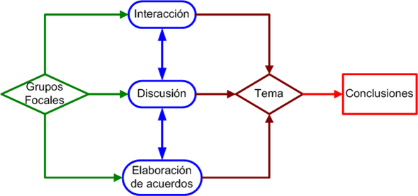 Proceso Grupo Focal