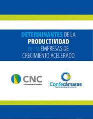 Determinantes de la productividad de las empresas de crecimiento acelerado