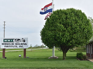 Image of Large Tree next to MWI entrance sign