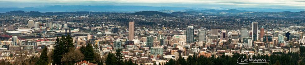 Portland City Scape
