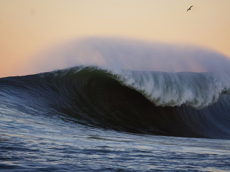 Sachi Cunnigham: More Water, More Waves, More Chaos