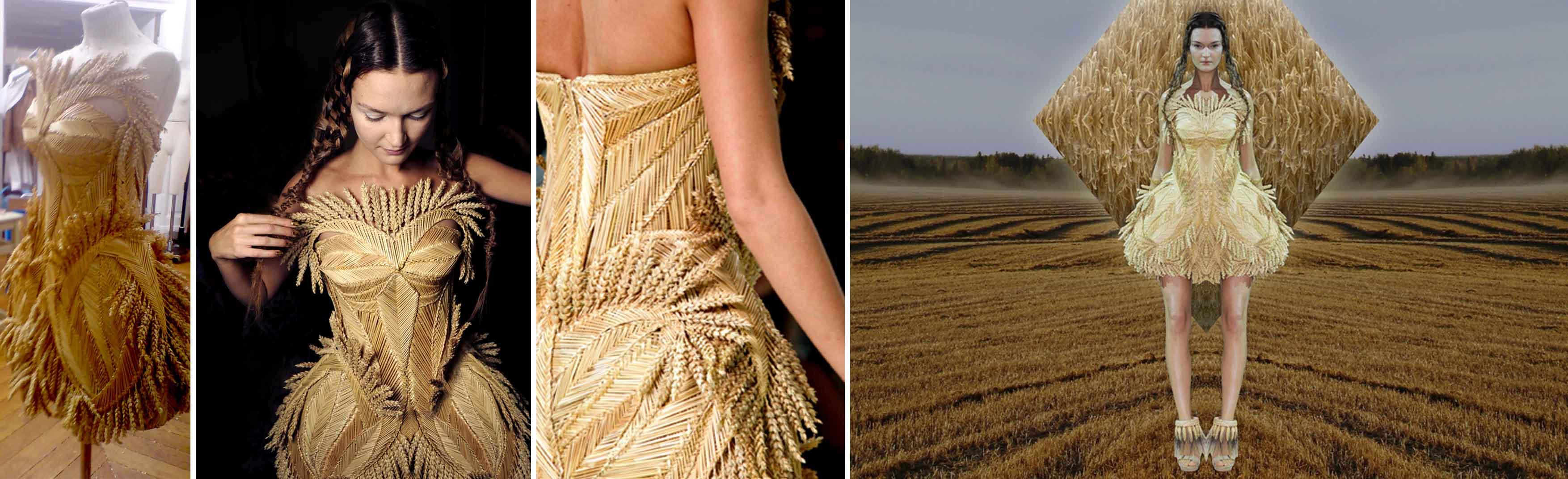oct 2010 blé