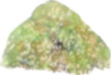 苔むす岩3(塩を使って)水彩画
