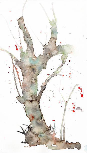 梅の古木(水彩画)