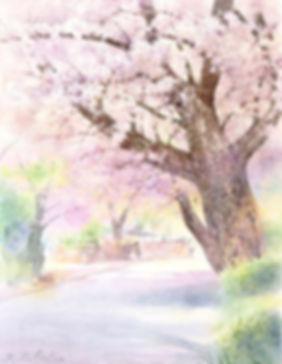 爛(鎌倉山)、水彩画 福井良佑