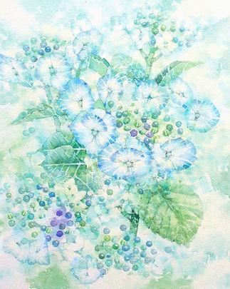 梅雨晴れに(紫陽花)水彩画