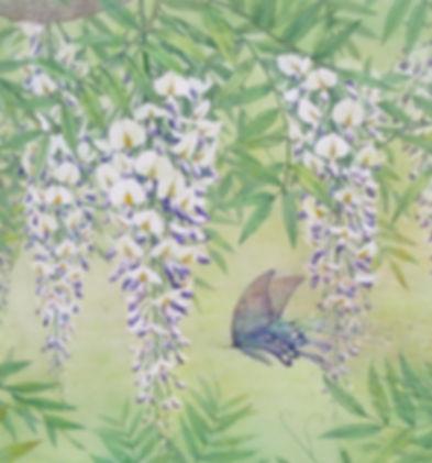 春陽・藤花図(水彩画)