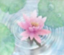 輪・睡蓮(水彩画)福井良佑