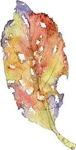 紅葉3(水彩画)