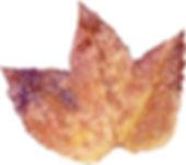 紅葉4(水彩画)