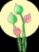 lotus-154915_640.png