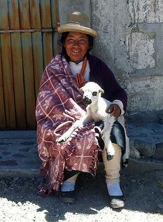 peruvian-336141_1280.jpg