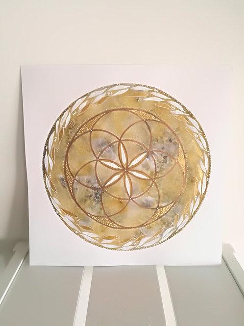 Moon crystal grid