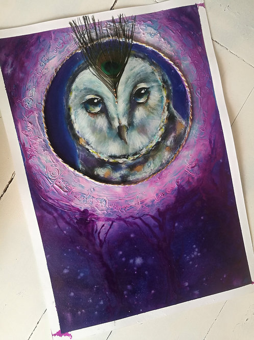 Owl - reserved