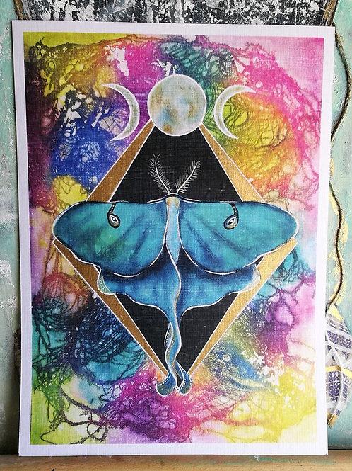 Print Luna Moth - Hand embellished with gold leaf paint