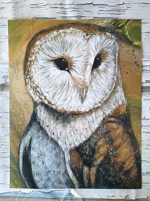 Print Owl the observer