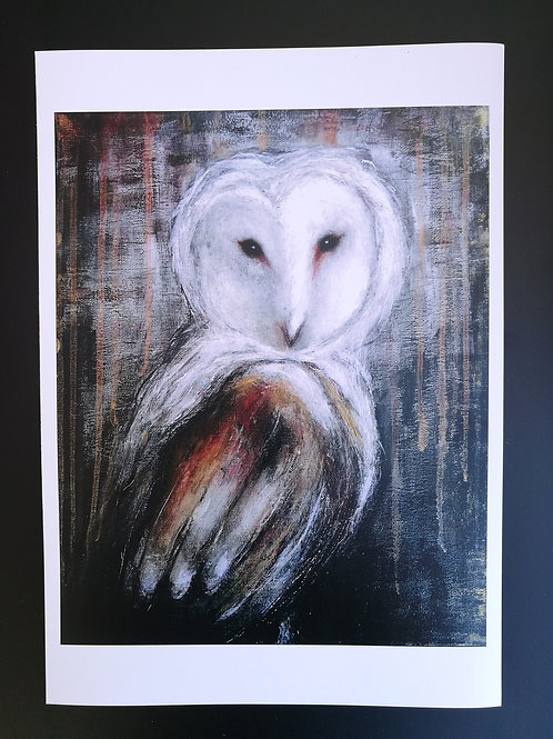 Print Owl into the light