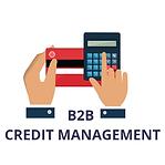 B2B-CREDIT-MANAGEMENT.png