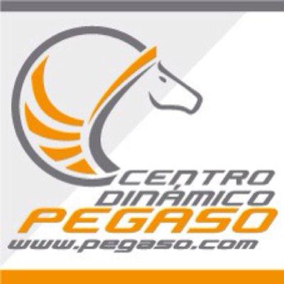 Centro Dinámico Pegaso