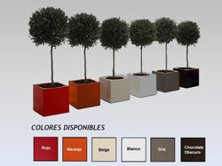 Nuestra Variedad de Colores