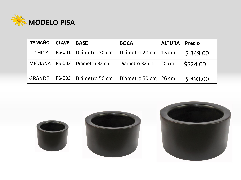 Modelo Pisa