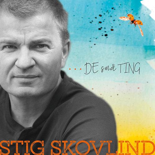 Stig Skovlind - De Små Ting (digital single)