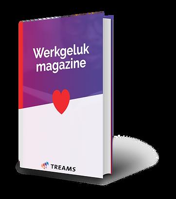 Werkgeluk magazine.png