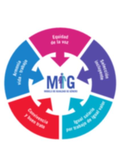 grafico-MIG-21.png