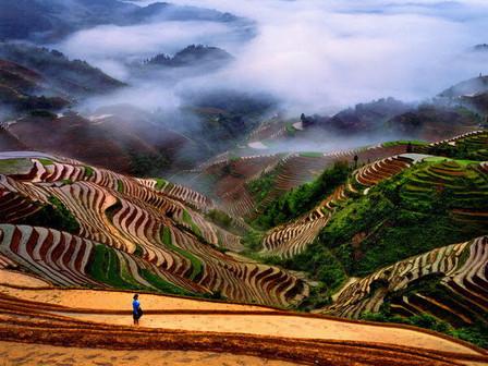 Breathtaking Rice Fields in Longsheng