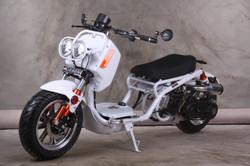 GEN-IV Maddog 50cc