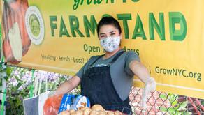 Where Youth Run the Farm, Food Scarce Communities Thrive