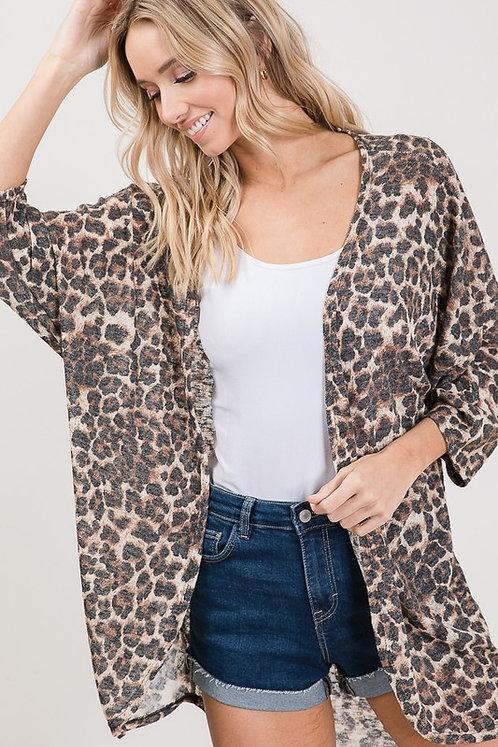 Cheetah Dream