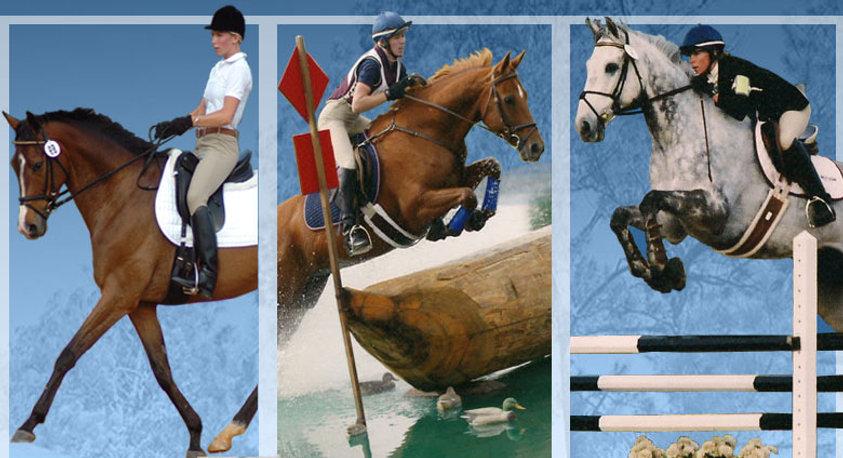 Trainor Equestrian