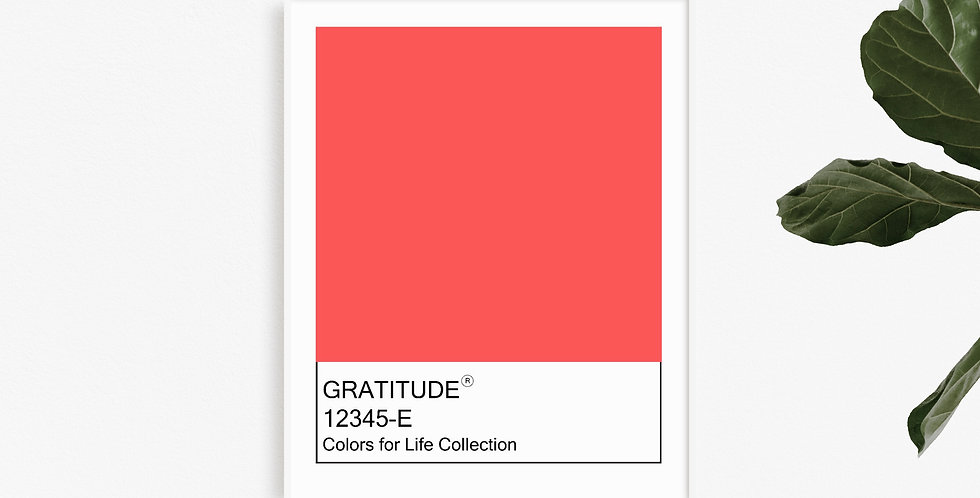 Colors for Life -Gratitude