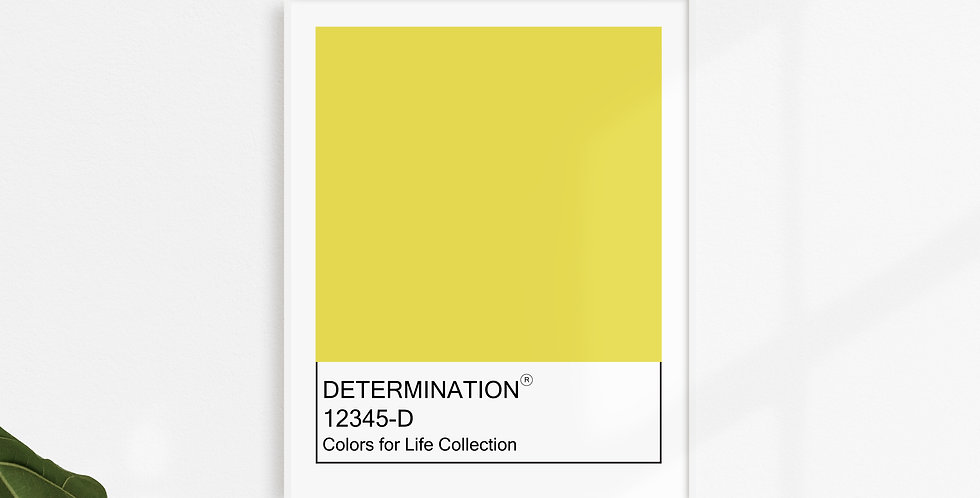 Colors for Life - Determination