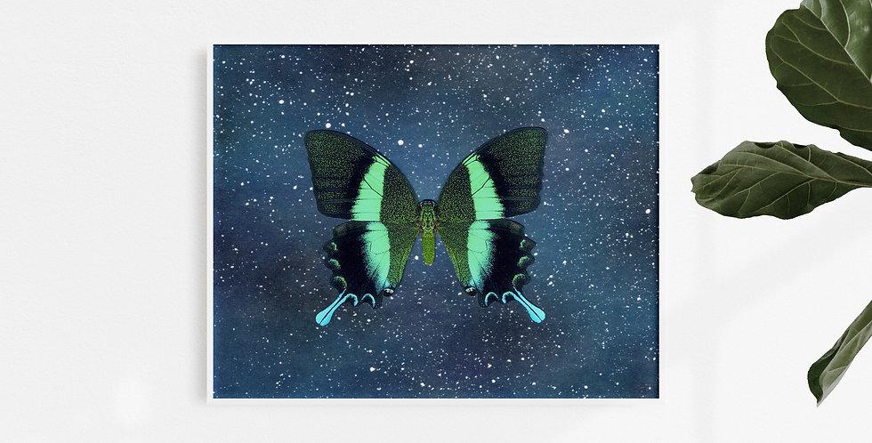 Fly Away #3