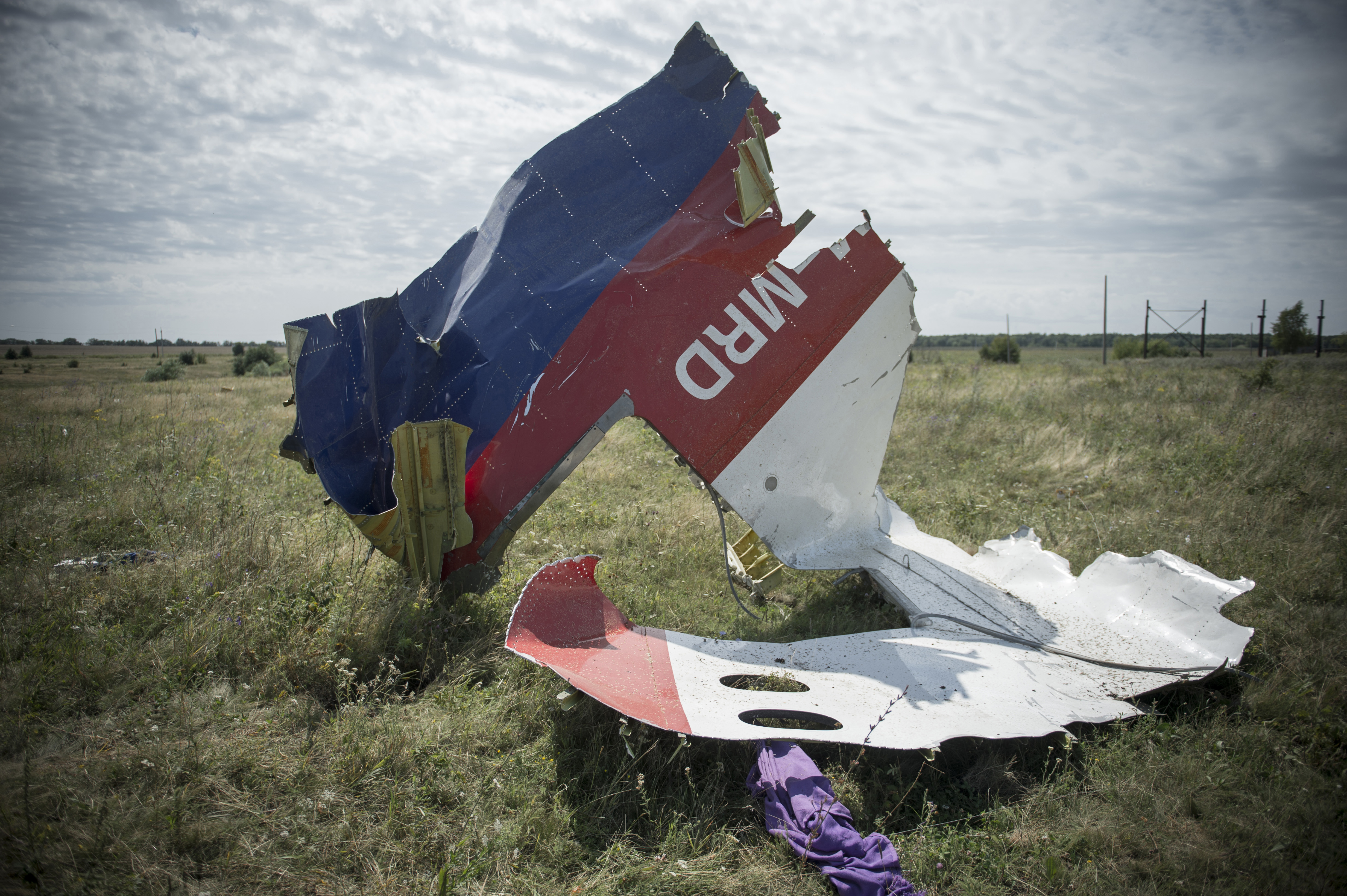 MH17 WING