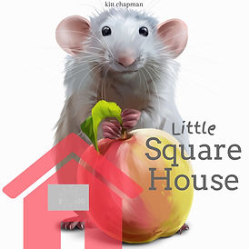 Little Square House.jpeg