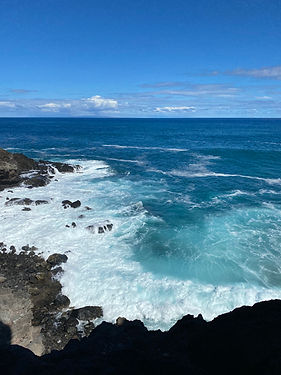 Aloha Tour 2.jpeg