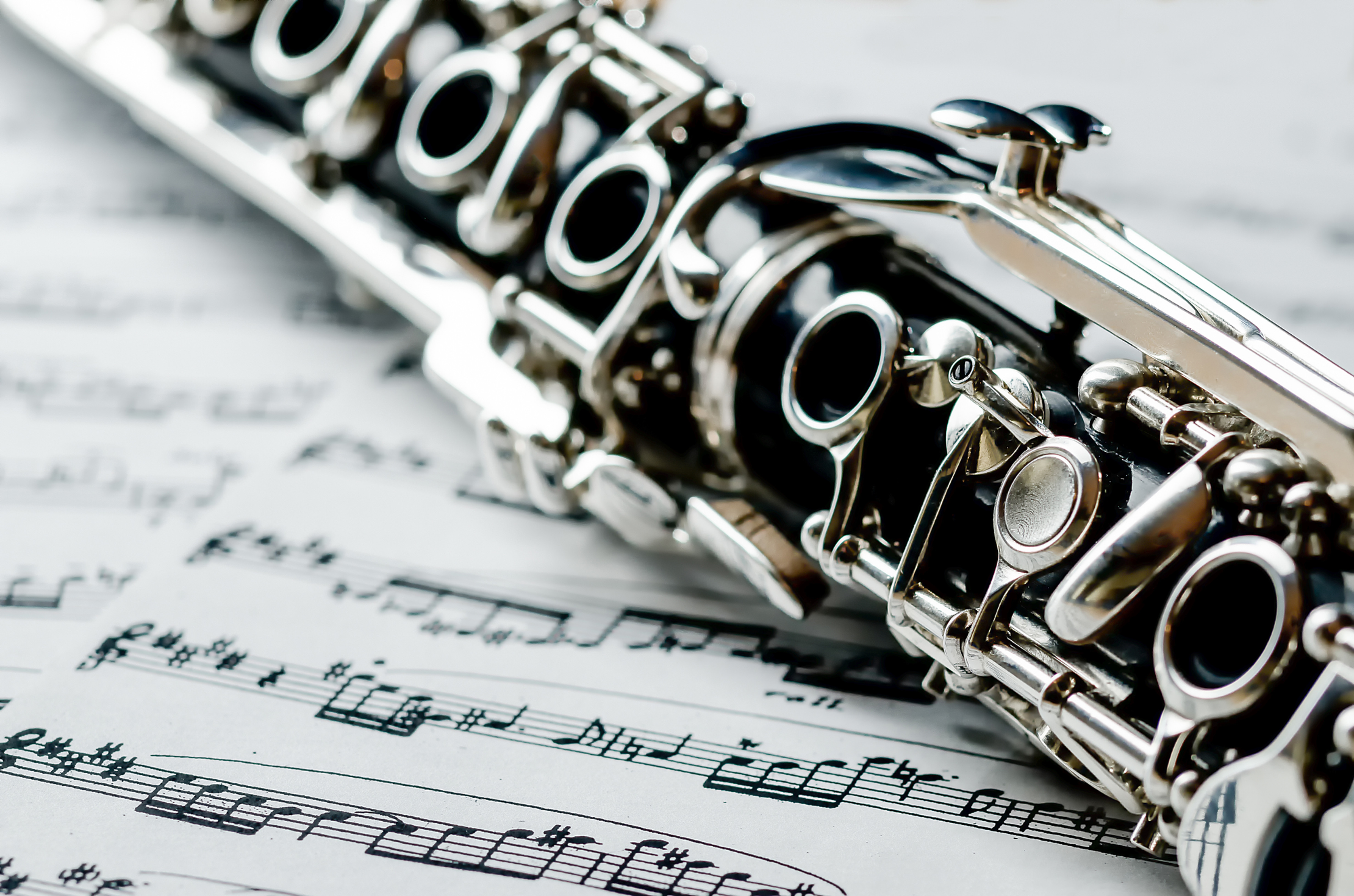 Clarinet Online Lesson (45min)