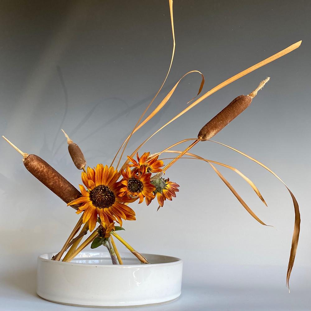 Ikebana arrangement with flat, round vase, cattail and echinacea.