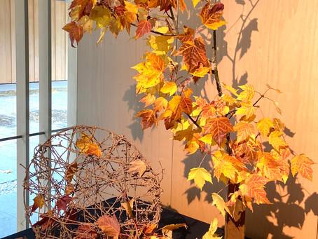 Autumn Ikebana at the Portland Japanese Garden