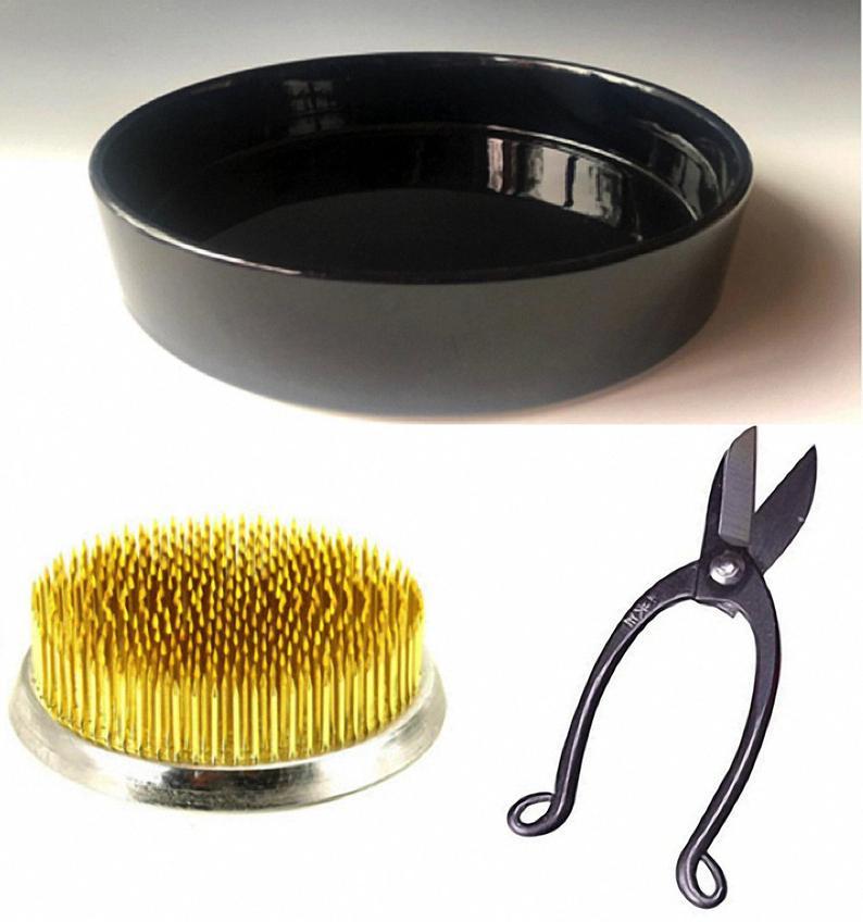 Ikebana Beginner's Kit.
