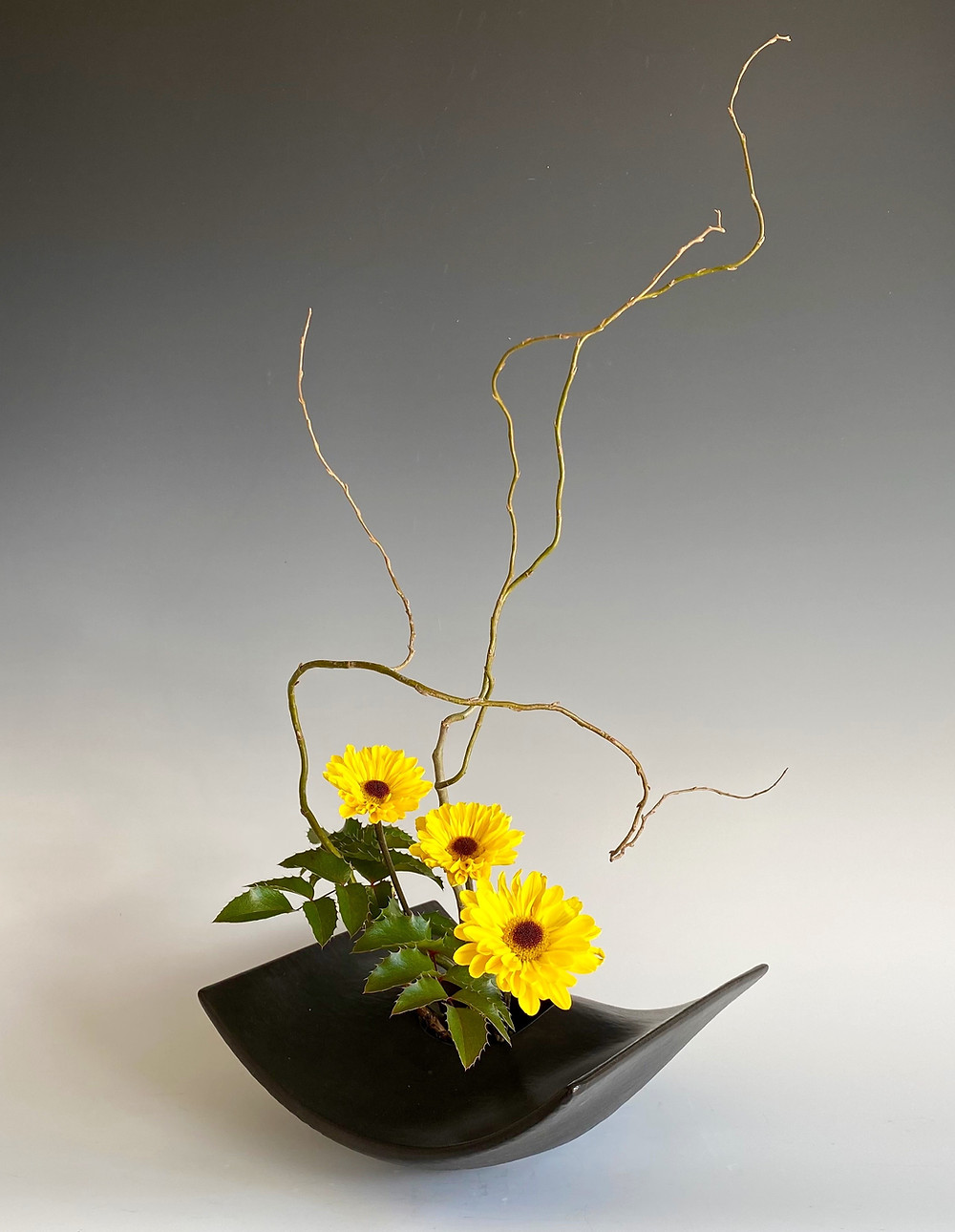 Japanese ikebana in modern vase with curly willow and chrysanthemum.