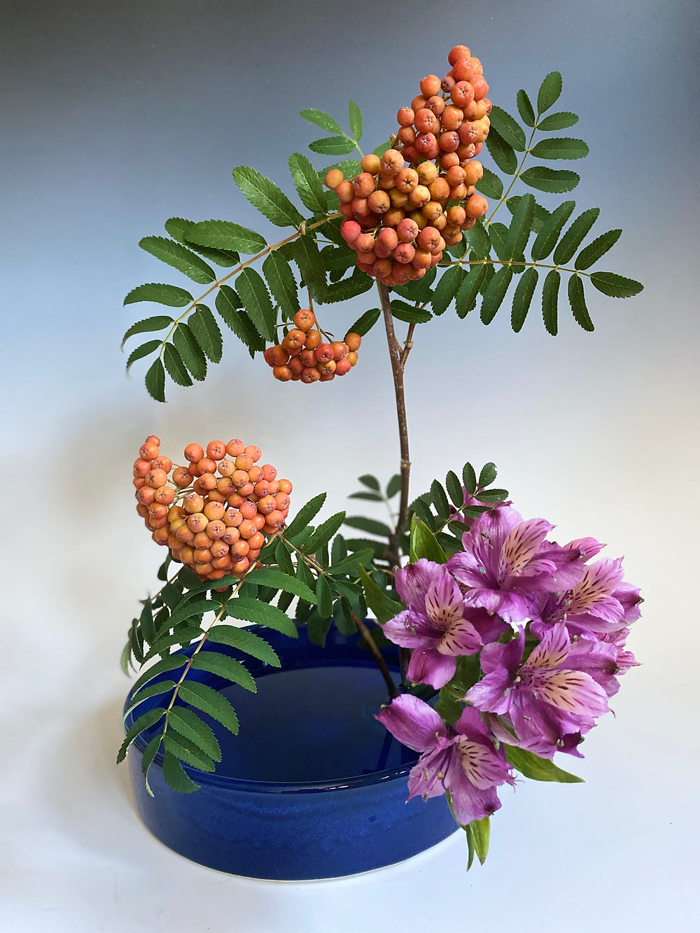 Japanese Ikebana with Alstroemeria and Western Ash.